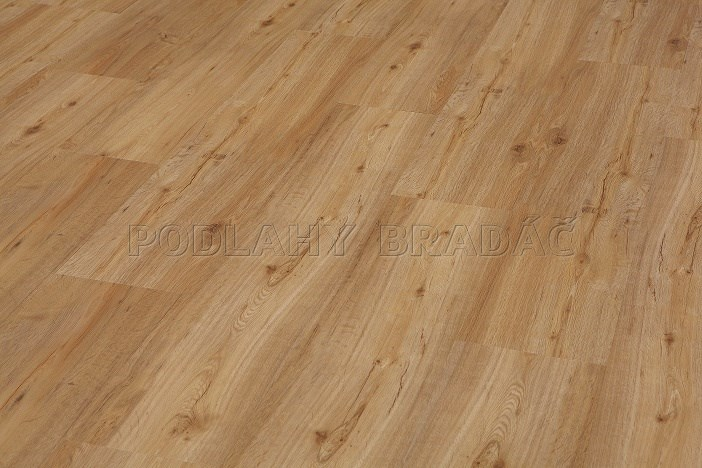 Vinylová podlaha Floor Forever Authentic Floor Dub zlatý 41168