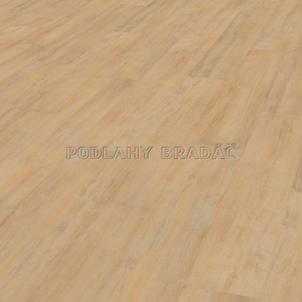 DESIGNLINE 600 WOOD CALM OAK CREM DB00010