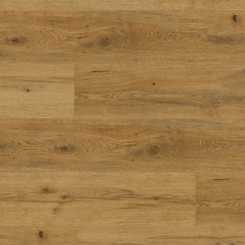 Expona Domestic C6 5821 Sherwood Oak