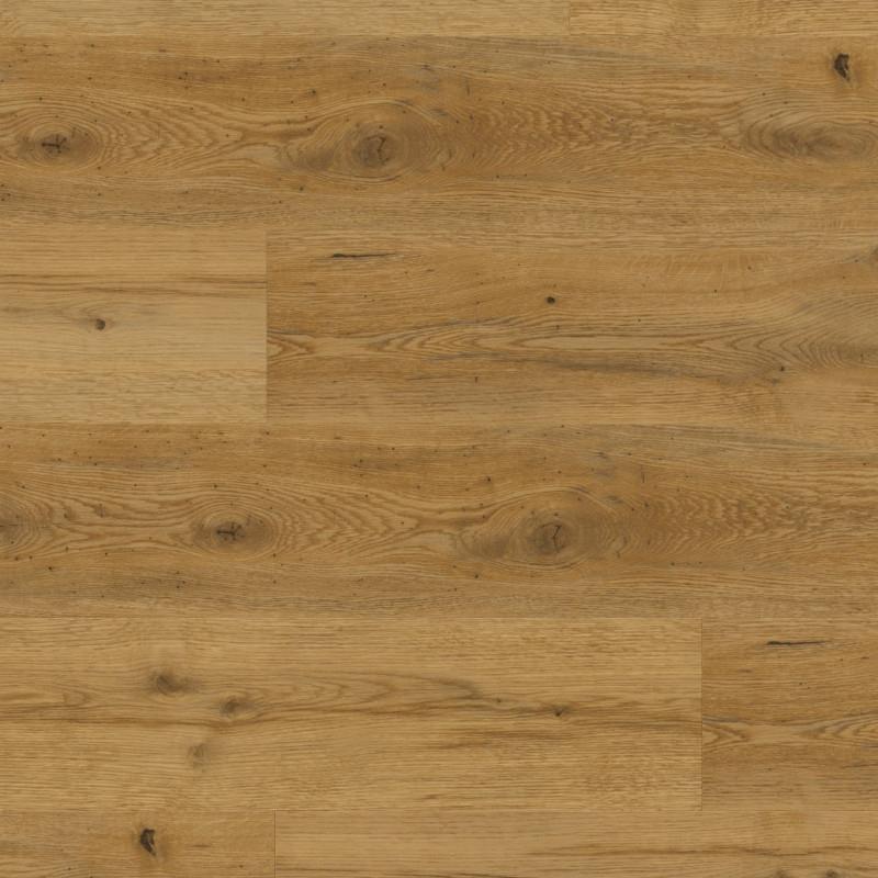 Expona Domestic C6 5821 Sherwood Oak