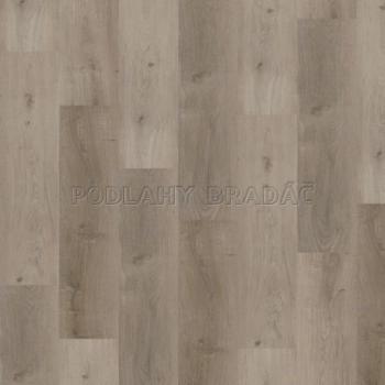 DESIGNLINE 400 WOOD Grace oak smooth DB00106