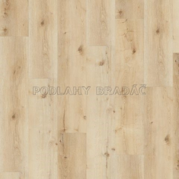 DESIGNLINE 400 Wood XL Luck Oak Sandy DB00127