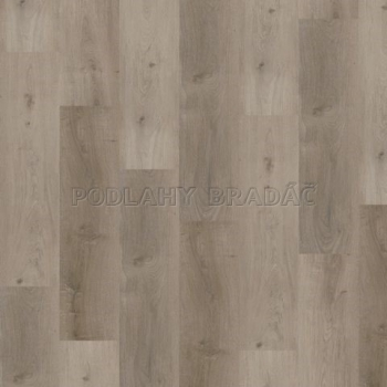 DESIGNLINE 400 WOOD Grace oak smooth MLD00106