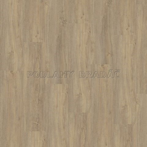 DESIGNLINE 400 WOOD Paradise oak essential MLD00112