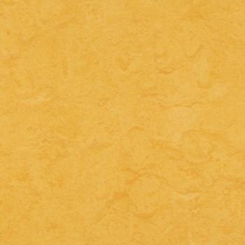 MARMOLEUM CLICK LEMON ZEST 333251