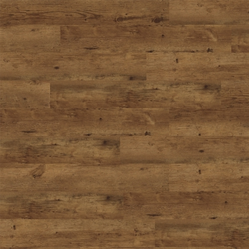 Expona Domestic C3 5951 Antique Oak