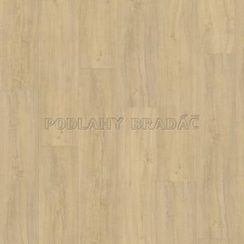 DESIGNLINE 400 Wood XL Kindness Oak Pure DB00125