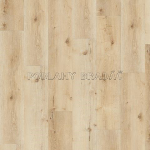 DESIGNLINE 400 Wood XL Luck Oak Sandy DB00127